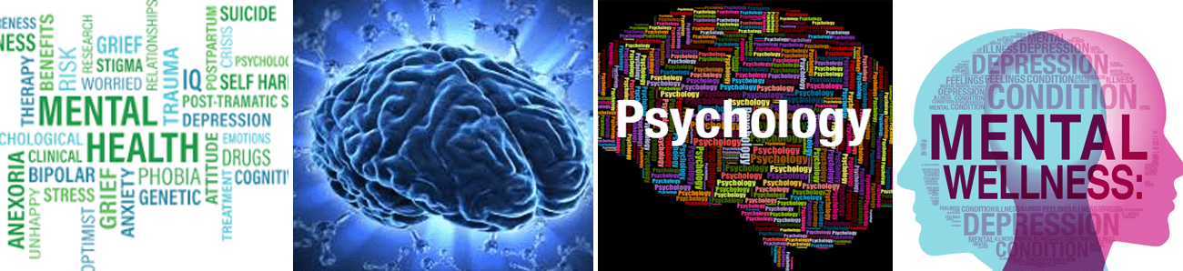 International Journal of Psychiatry Research